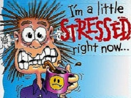 Is Stress Taking A Toll In Your Life?